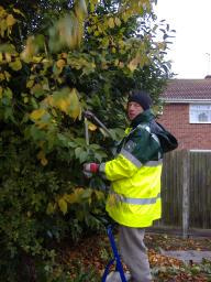 Cllr Barry Aspinell works on the overgrown shrubs