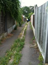BEFORE: The overgrown pathway