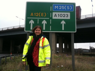 Cllr Karen Chilvers at the initial review of the Brook Street roundabout