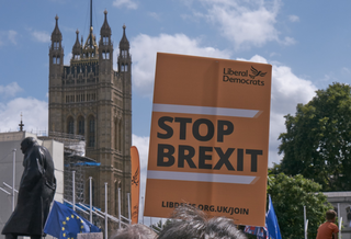 Lib Dem Stop Brexit placard in Westminster (Keith Selmes)