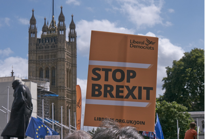 Lib Dem Stop Brexit placard in Westminster (Keith Selmes)